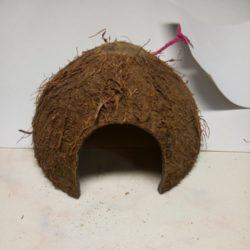 Домик из кокосовой скорлупы